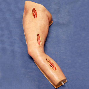 Long Femoral Leg Simulator